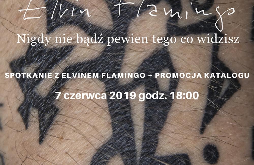 Flamingo- spotkanie- VI 2019