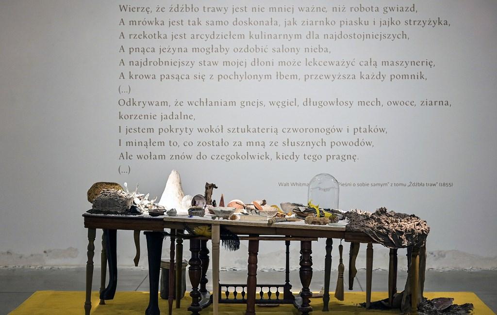 Wystawa Królikiewicz