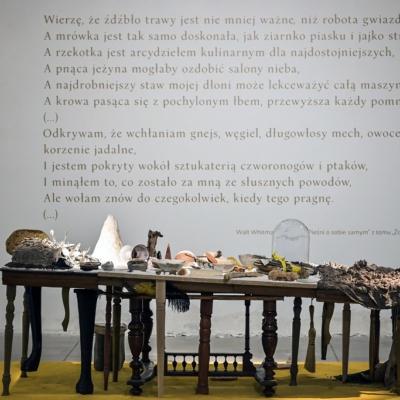 """Finisaż wystawy Anny Królikiewicz """"od sufitu, od dębu, od marchwi"""""""